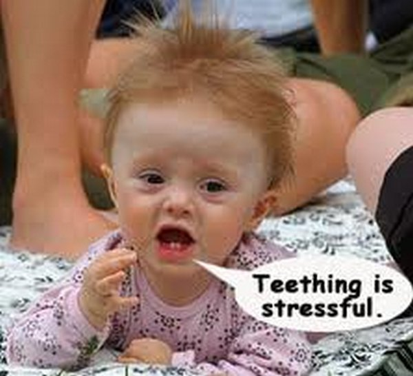 babies 15 Funny Baby Pictures