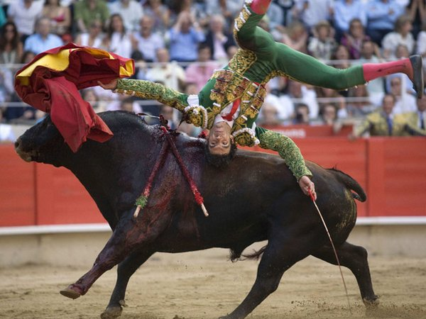 matador spain 07 Dramatic Moments When Matadors Get Gored by a Bull