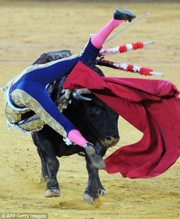 matador spain 12 Dramatic Moments When Matadors Get Gored by a Bull