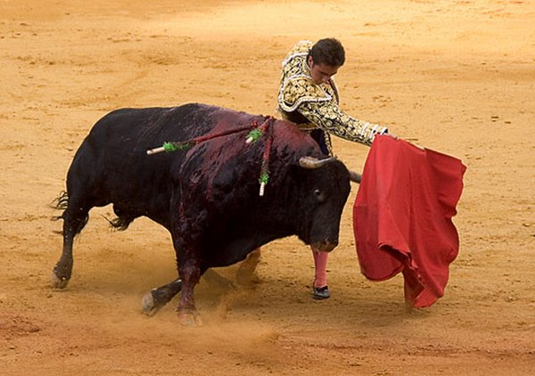 matador spain 13 Dramatic Moments When Matadors Get Gored by a Bull