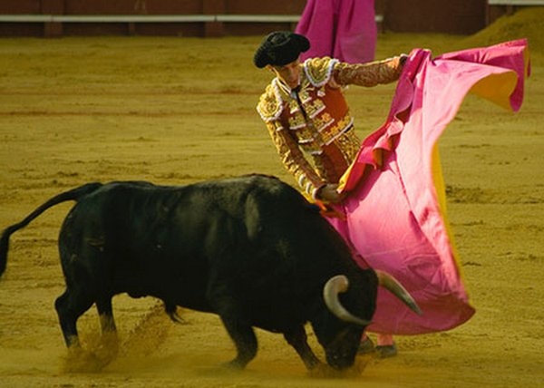 matador spain 14 Dramatic Moments When Matadors Get Gored by a Bull