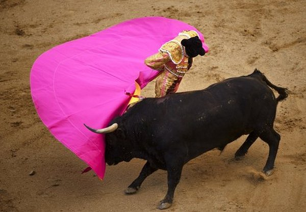 matador spain 16 Dramatic Moments When Matadors Get Gored by a Bull
