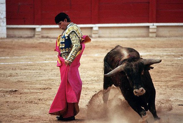 matador spain 20 Dramatic Moments When Matadors Get Gored by a Bull