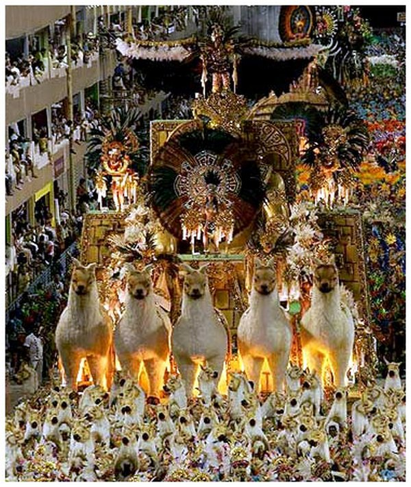 carnival rio de janeiro 17 Brazils Carnival Madness