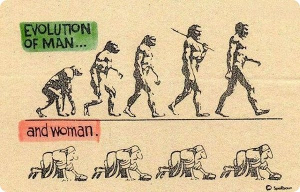 evolution 10 Funny Photos of Evolution In Every Things