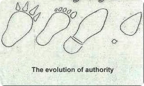 evolution 12 Funny Photos of Evolution In Every Things
