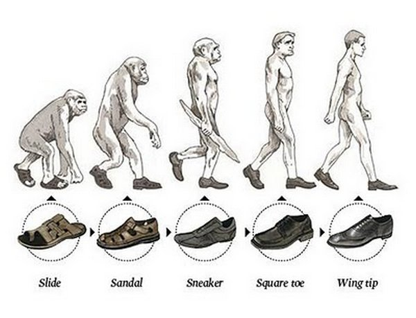 evolution 19 Funny Photos of Evolution In Every Things