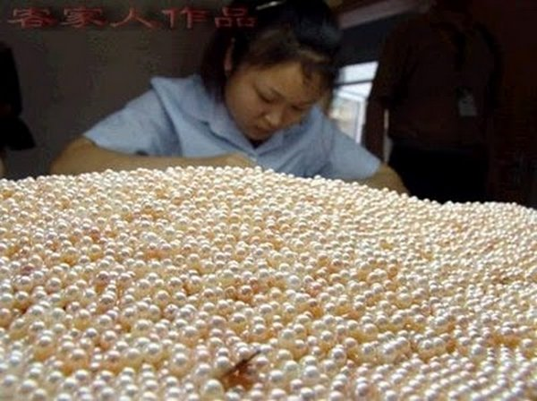 how are pearls made 10 Where Do Pearls Come From?