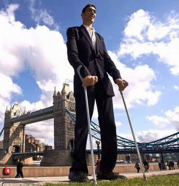 tallest man 06 Meet Sultan Kosen From Turkey   The Worlds Tallest Man 81(2.47 meter)
