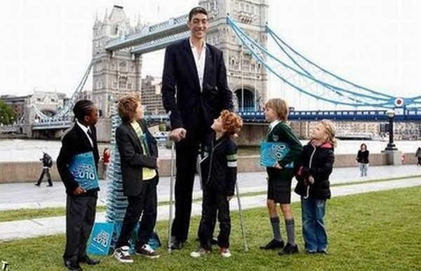 tallest man 10 Meet Sultan Kosen From Turkey   The Worlds Tallest Man 81(2.47 meter)