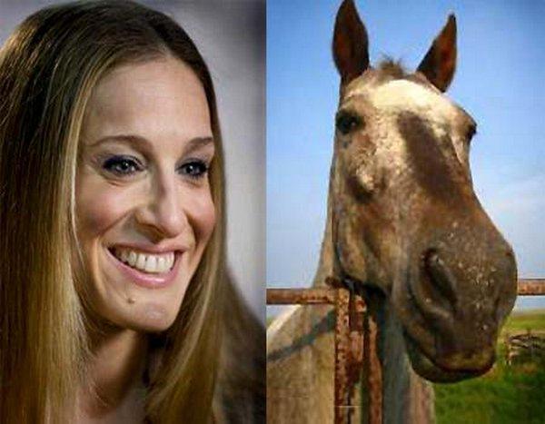 sarah jessica parker looks like a horse 04 Sarah Jessica Parker Looks Like A Horse?