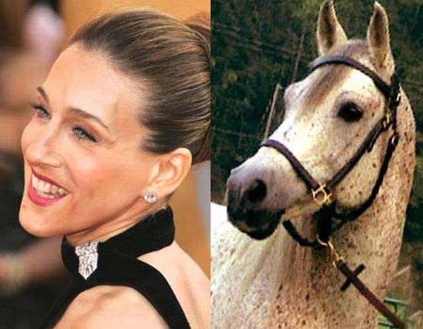 sarah jessica parker looks like a horse 05 Sarah Jessica Parker Looks Like A Horse?