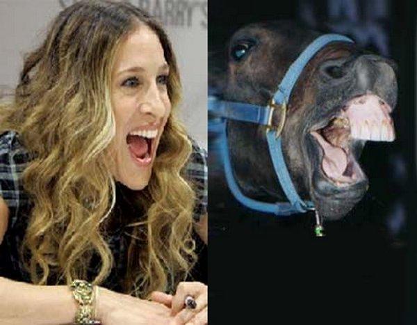 sarah jessica parker looks like a horse 08 Sarah Jessica Parker Looks Like A Horse?