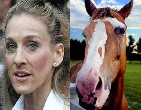 sarah jessica parker looks like a horse 12 Sarah Jessica Parker Looks Like A Horse?