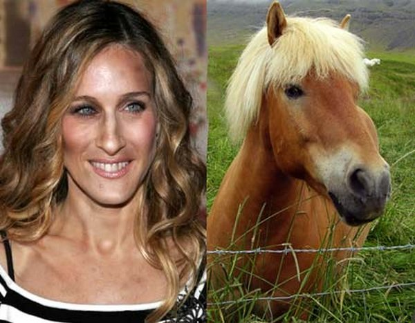 sarah jessica parker looks like a horse 13 Sarah Jessica Parker Looks Like A Horse?