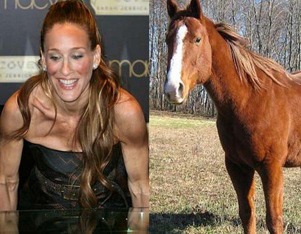 sarah jessica parker looks like a horse 14 Sarah Jessica Parker Looks Like A Horse?