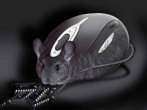 most creative computer mice 06 15 Most Creative Computer Mice
