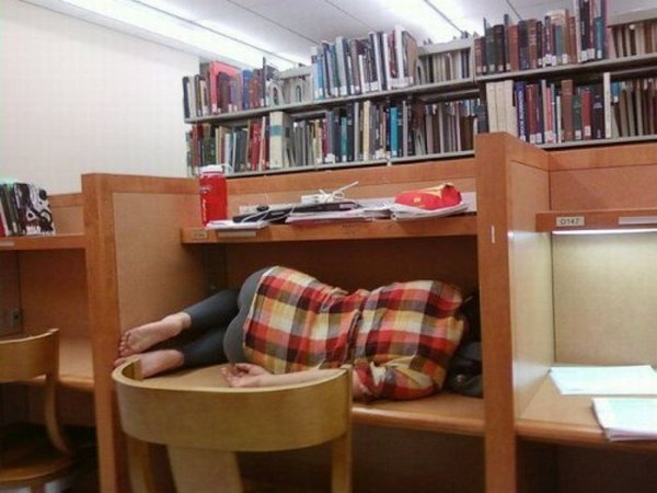 Sleeping in Library ( photo: wackymania.com )