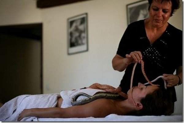 snake message 01 Refreshing Snake Massage In Israel