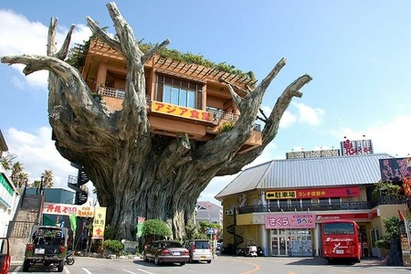 amazing tree houses 04 6 Designer Tree Houses Youd Love to Live In
