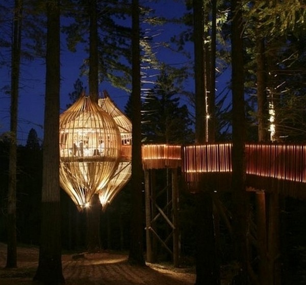 amazing tree houses 10 6 Designer Tree Houses Youd Love to Live In