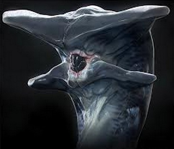 the worst aliens ever 01 Top 25 Most Unusual Aliens