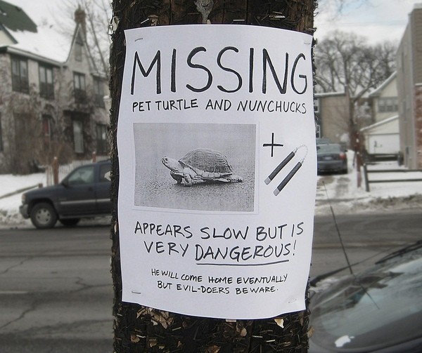 funniest signs on telephone poles 01 Top 10 Funniest Signs on Telephone Poles