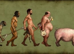 Funny Photos of Evolution In Every Things