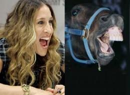 Sarah Jessica Parker Looks Like A Horse?