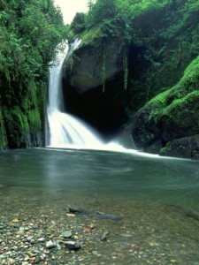 costa rica waterfall 225x300 Exotic Vacation Destinations: Costa Rica