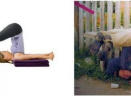 Yoga And Drinking Have the Same Benefits?
