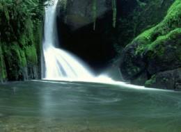 Exotic Vacation Destinations: Costa Rica