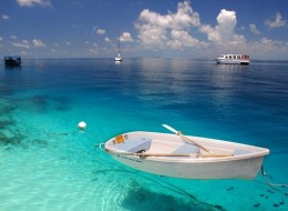 Let's Take A Trip To The Maldives
